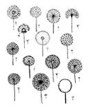 Dandelions collection, sketch fro your design Royalty Free Stock Images