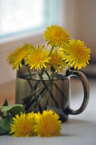 Dandelions in a cup Royalty Free Stock Images