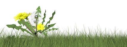 Dandelions - 3D render Royalty Free Stock Images