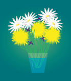 Dandelions, daisies and buttercups Royalty Free Stock Photos