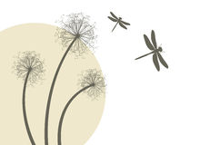 Dandelions and dragonflies Royalty Free Stock Images