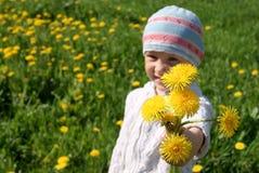 dandelions dziewczyna fotografia stock
