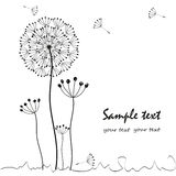 Dandelions floral greeting card vector Royalty Free Stock Photos