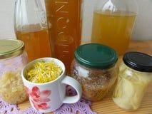 Dandelions flowers drink. Dandelions flowers ginger beverage drink wine Royalty Free Stock Image