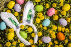 Dandelions flowers with Easter eggs Royalty Free Stock Photo