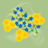 Dandelions and forget me not Royalty Free Stock Images