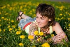 Dandelions glade Royalty Free Stock Photo