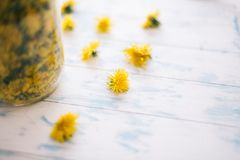 Dandelions in a glass jar on a white background royalty free stock photo
