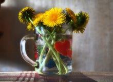 Dandelions i serca Obrazy Stock