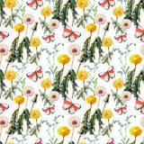 Dandelions , meadow flowers, butterfly, watercolor, pattern seamless Stock Photos