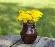 Dandelions na drewnianym ogródu stole Obrazy Royalty Free