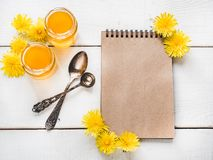 Dandelions, notebook with a blank page stock image
