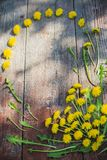 Dandelions on old wooden background Royalty Free Stock Photography