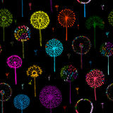 Dandelions, seamless pattern for your design Royalty Free Stock Image