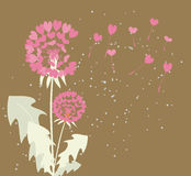 Dandelions with seeds of love Stock Photo