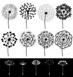 Dandelions set  Royalty Free Stock Image