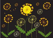 Dandelions. A stylized vector illustration of dandelion flowers with a black background Stock Image