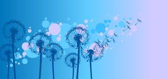 dandelions stylizowali wiatr Zdjęcie Royalty Free
