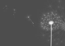 dandelions szarzy ilustracja wektor