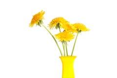 Dandelions In Vase Stock Image
