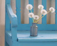 Dandelions in vase on  bench Royalty Free Stock Images