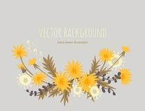 Dandelions. vector background royalty free illustration