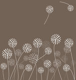 Dandelions Vector Stock Photos