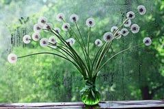 Dandelions w białej wazie Zdjęcia Royalty Free