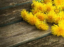 Dandelions on wooden background Royalty Free Stock Photography