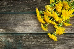 Dandelions on wooden background Royalty Free Stock Photos