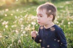 Dandellions de soufflement de garçon photographie stock libre de droits