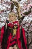 Dando boas-vindas à mola e a comemorar a flor de cerejeira Imagens de Stock Royalty Free
