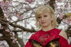 Dando boas-vindas à mola e a comemorar a flor de cerejeira Foto de Stock Royalty Free