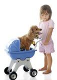 Dando a cachorrinho um passeio Fotografia de Stock