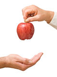 dando a maçã como um presente da saúde Imagens de Stock