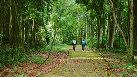 Dando um ciclo através da floresta tropical, caminho à terra claro, cercado pela planta do overgrowth filme