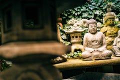 Dando una occhiata al Buddha da dietro la lanterna di saggezza immagine stock