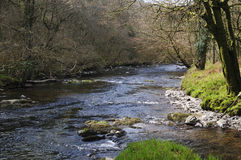 Dane's Brook joins River Barle Royalty Free Stock Images
