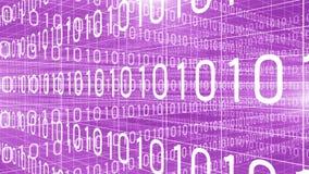 Dane technologii cyfrowej liczb trawersowania fiołek 4K ilustracji