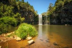 Dangar nedgångar i rainforesten av den Dorrigo nationalparken, Australien Arkivfoto