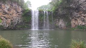 Dangar Waterfall in Cathedral Rock National Park. This region of Australia, sustains an indigenous ecology named `dry rainforest`, that is World Heritage listed stock footage