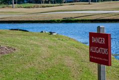 DANGER ALLIGATOR SIGH. DANGER Alligator sign on the golf course Royalty Free Stock Photography