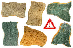 Old Sponges Royalty Free Stock Photo
