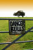 Danger Bulls. A hand painted metal sign warning of the danger of bulls in a field. Sign witred to a metal constructed gate with green field and trees to horizon Stock Images