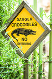 Danger - crocodiles Royalty Free Stock Photos