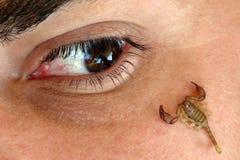 Danger eye Royalty Free Stock Images