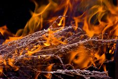 Danger flame. Open fire can be danger royalty free stock photography