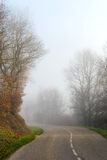 Danger foggy road in the forest Royalty Free Stock Photos