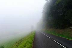 Danger foggy road in the forest Stock Photography