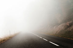 Danger foggy road in the forest Stock Images
